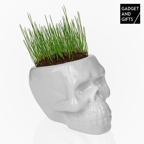 Gadget and Gifts Skull Grass Plant Pot-Universal Store London™