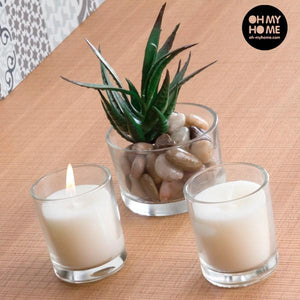 Oh My Home Aromatic Candles with Decorative Cactus (pack of 3)-Universal Store London™