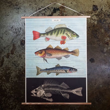 Load image into Gallery viewer, Fish Chart Print