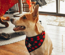 Load image into Gallery viewer, MN Plaid Dog Bandana