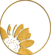 The signature embossed half daisy logo in warm gold