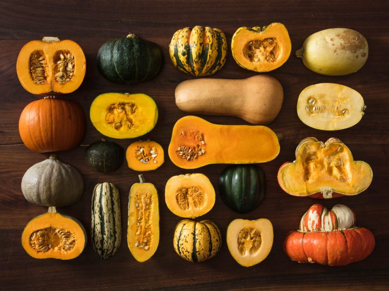 Winter Squash Guide