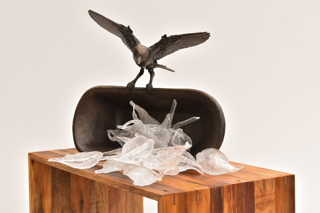 Anna Williams