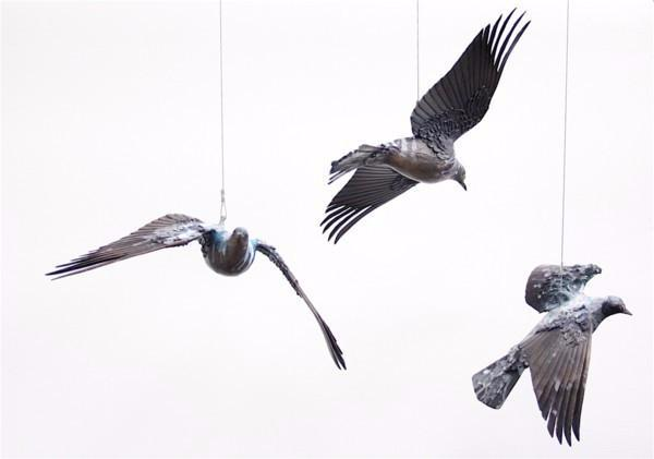 Bronze flying pigeon sculpture by Anna Williams