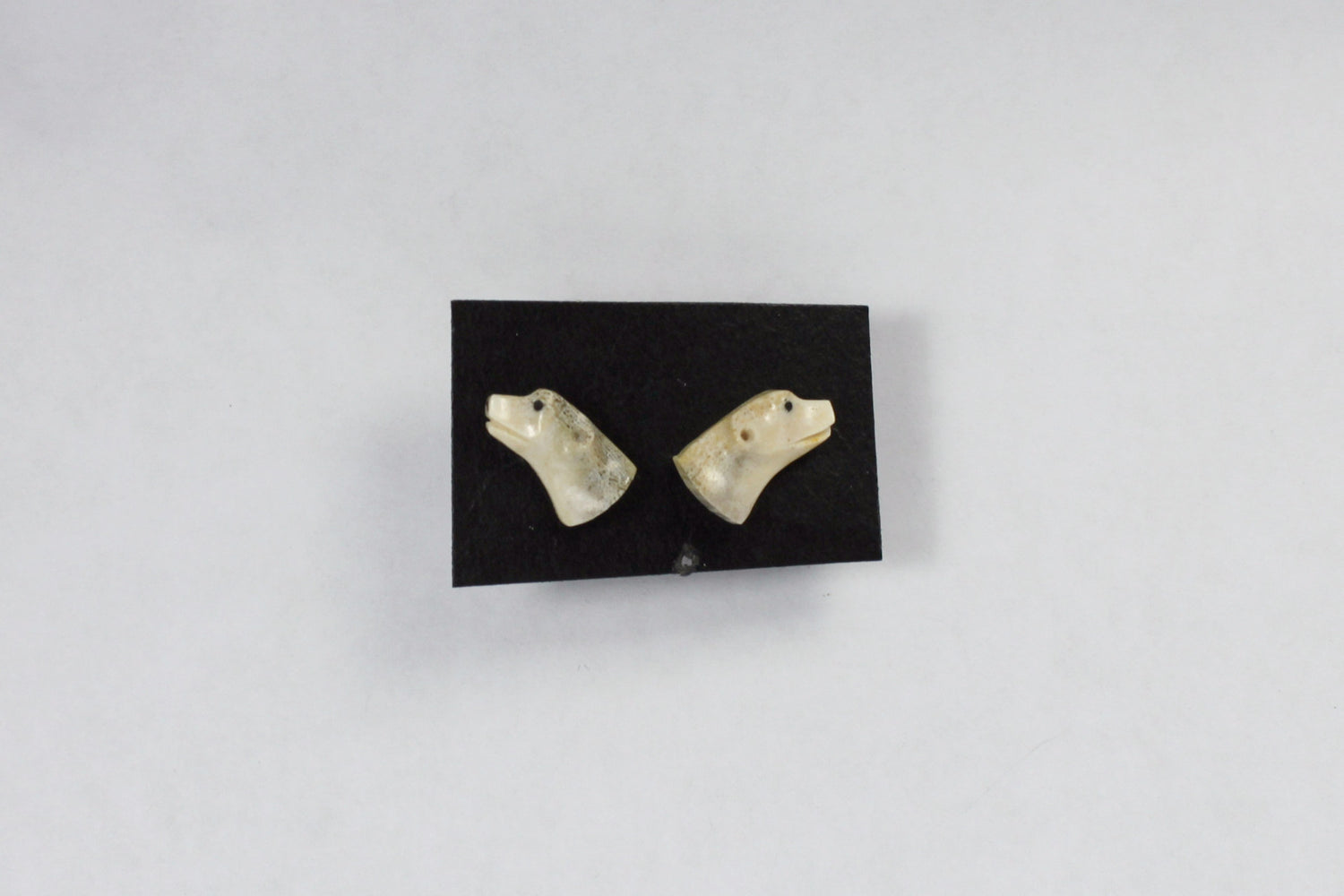 Bear head stud earrings in caribou antler by Andrew Nowdlak.