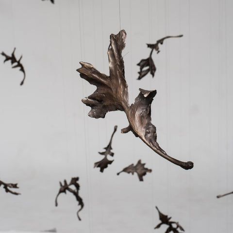 Bronze oak leaf by Anna Wllliams