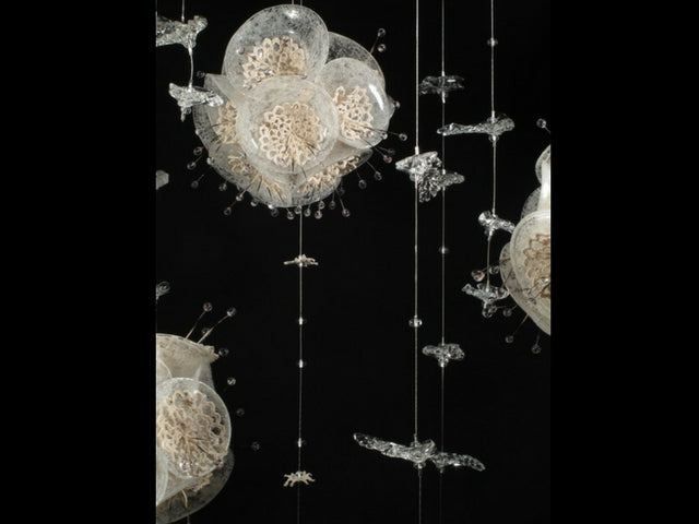 Snow Flowers are blown and flame worked glass blooms with reclaimed lace centers. Dimensions vary by installation by Tanya Lyons.