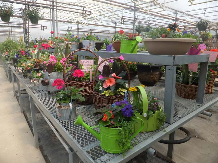 Patio Gardens By Roorbach S Manitowoc Flower Delivery Roorbach