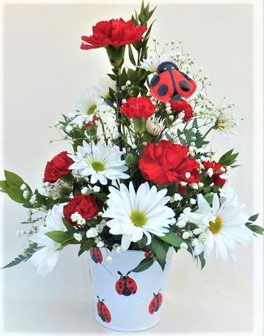 Lady Bug Bouquet