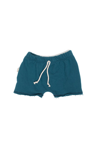 boy shorts in 'peacock'