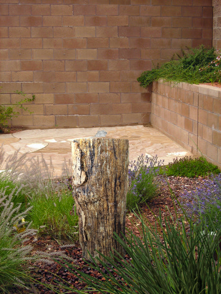 Petrified Wood Stump 480