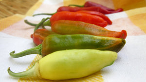 10 Things About Fish Peppers You Should Know