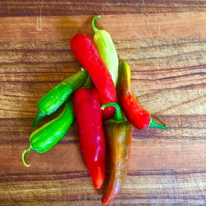 Fish peppers from Muirhead Farms in Hampshire Illinois grown exclusively for Gindo's Spice of Life hot sauces.