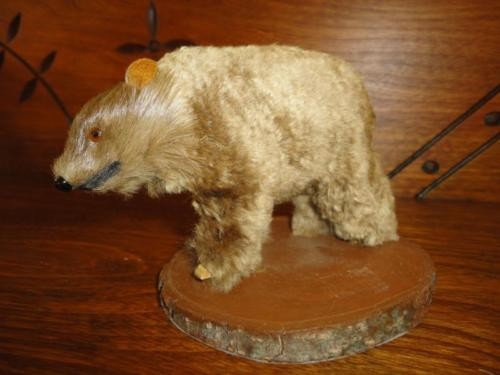 Antique Real Fur Wooden BEAR Glass Eyes Hand Made Canadian Souvenir NMCO MTL