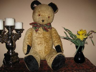 Antique 1930s Dutch Van Gelden Disc Jointed Teddy Bear Gold Black Jumbo 28 Inch