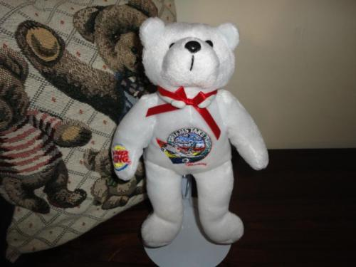 Burger King Air Canada Calgary DREAMS TAKE FLIGHT Charity Bear