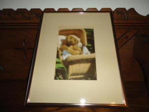 Antique Large Steiff Teddy Bear Baby in Wicker Carriage Glass Framed Picture