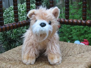 Terrier Dog Bearenboys Holland Soft Plush