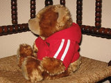 Eddy Toys Holland Hug Me Bear with Hoody Valentines Day 13 inch