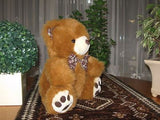 Promotional Co. SWITZERLAND Cute Brown Teddy Bear 12 inch