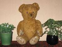 Antique 1930s Dutch Van Gelden Jointed Teddy Bear Light Brown Plush 21 Inch 54cm