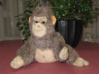 Antique Steiff Gorilla Gora Dralon 6625,05 1961 - 1963