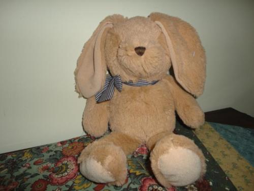 The Childrens Place BUNNY RABBIT Super Soft