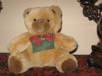 Christmas New Year Polar Teddy Bear Brown Plush in Satin Pouch Present