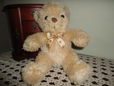 Teddy Bear with Bear Paw Ribbon