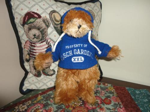 Busch Gardens Florida Teddy Bear wearing Hooded Sweatshirt Embroidered