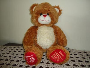 Build a Bear Canada Disney High School Musical