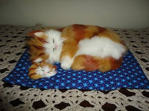 Sleeping Mother Cat & Baby Kitten on Quilt Real Fur