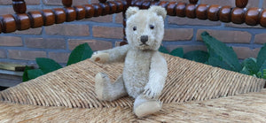 Antique 1940s Steiff Germany Teddy Bear 18 CM Mohair Glass Eyes Double Squeaker