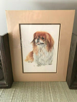 Pekingese Dog Art Print New Sealed with Template 10x8 inch