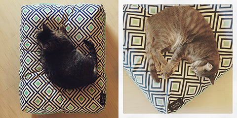 Hauspanther's review of Lion + Wolf cat beds