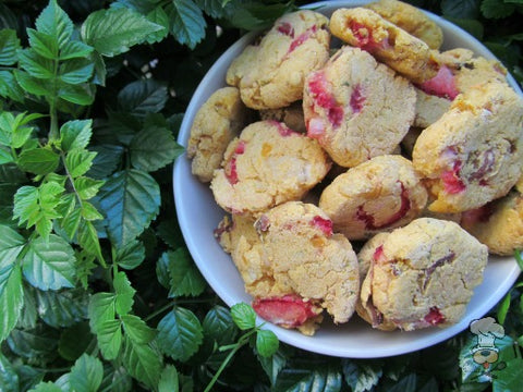 Sweet Potato Strawberry Chicken Treats from Doggy Dessert Chef