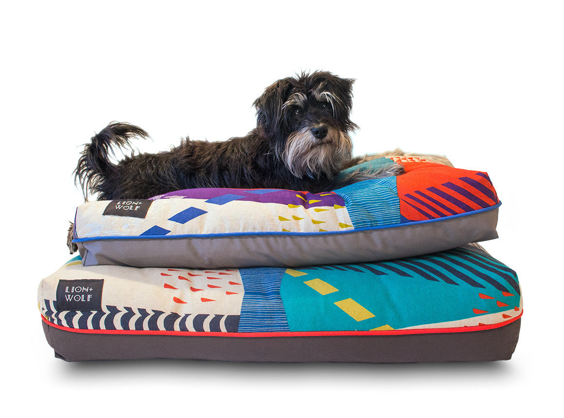 modern dog beds from lion wolf