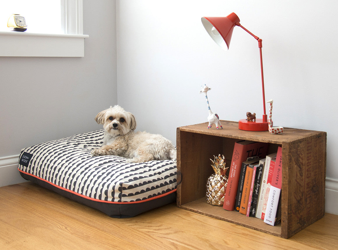 designer dog beds from lion  wolf -  limited edition luxury pet bed  lion  wolf