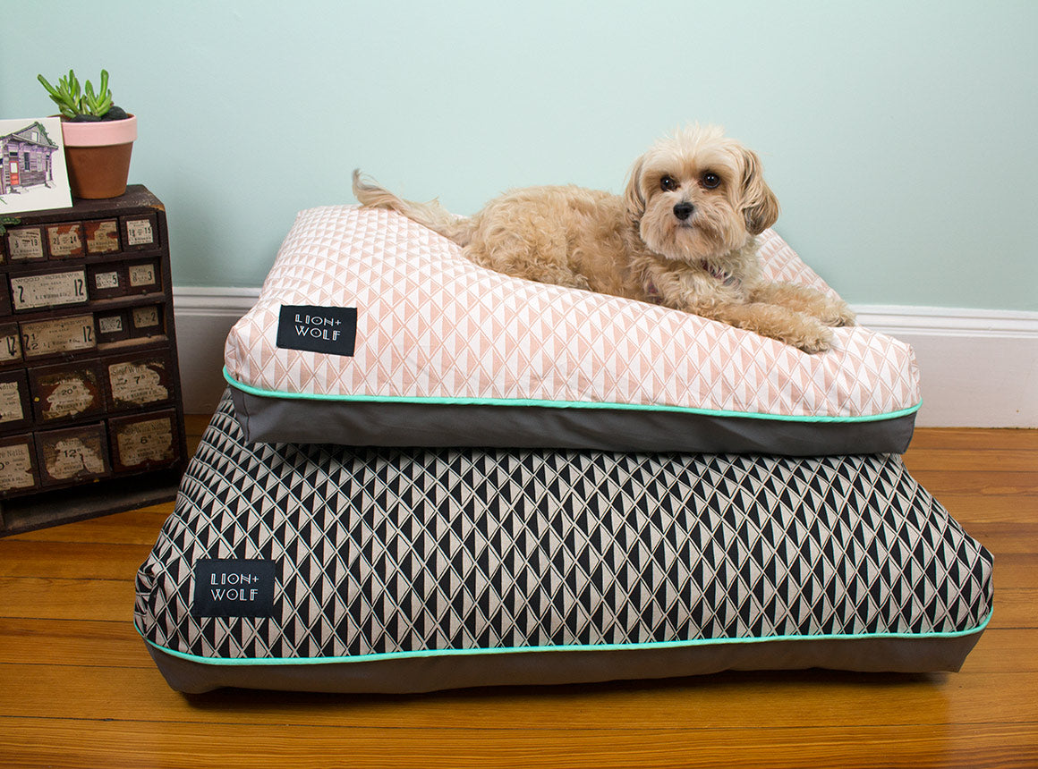 Ordinaire ... Modern Dog Beds ...