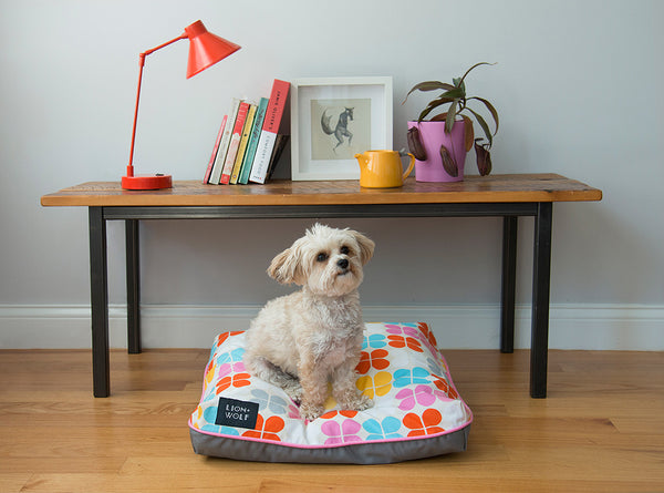Pink Dog Beds from Lion + Wolf