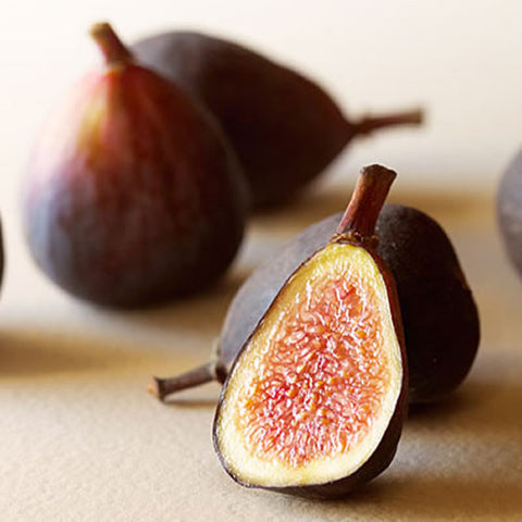 cordell's: Fig - Dark Balsamic Vinegar - Balsamic Vinegar