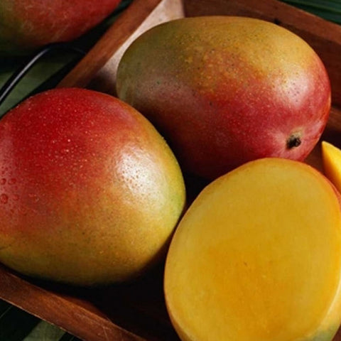 cordell's: Alfoos Mango - White Balsamic Vinegar - Balsamic Vinegar