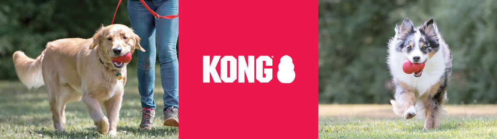 KONG FOR DOGS