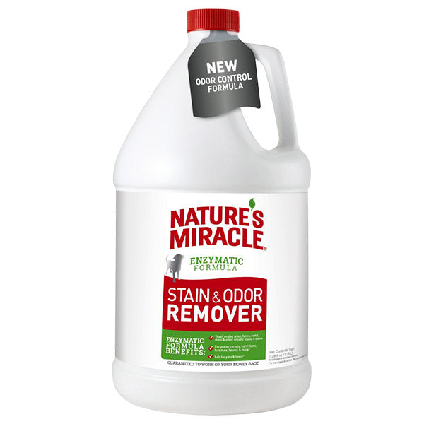 Stain & Odor Remover, Pour (1 gal)