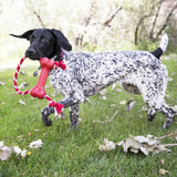 KONG Goodie Bone™ with Rope