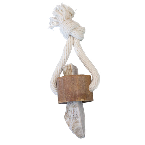 Wild Antler Chew Treat Toy