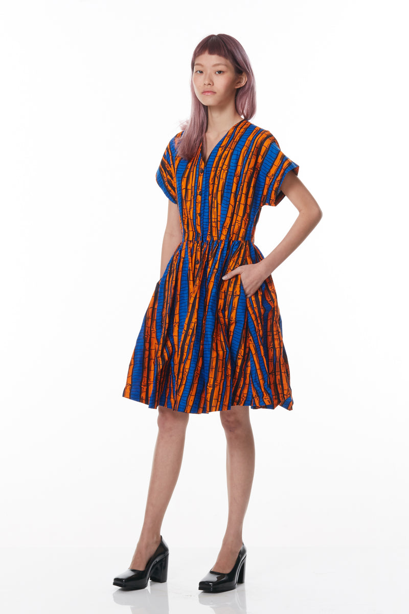 Fit & Flare Dress (Bamboo Print)