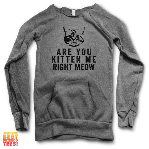 Are You Kitten Me Right Now | Maniac Sweater on a super comfortable Sweaters for sale at Awesome Best Friends' Tees