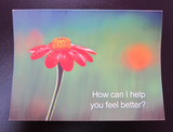 Courageously Yours Cards