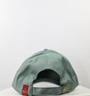 Logo 6 Panel Dad Hat (Pastel Green)